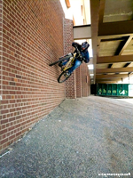 thumb-Wallride-1010061.jpg